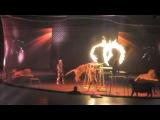 Цирк в Юбелейном(3) тигры прыгают через огонь